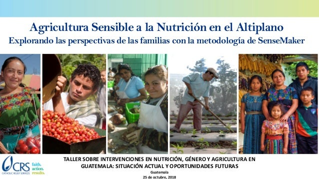 Agricultura Sensible a la Nutrición en el Altiplano Explorando las perspectivas de las familias con la metodología de Sens...