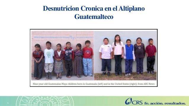 Agricultura sensible a la nutrición en el Altiplano. Explorando las perspectivas de las familias con la metodología SenseMaker Slide 3
