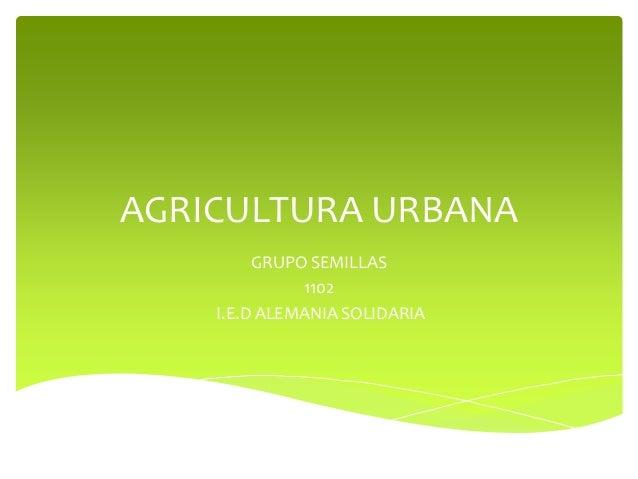 AGRICULTURA URBANA         GRUPO SEMILLAS              1102    I.E.D ALEMANIA SOLIDARIA