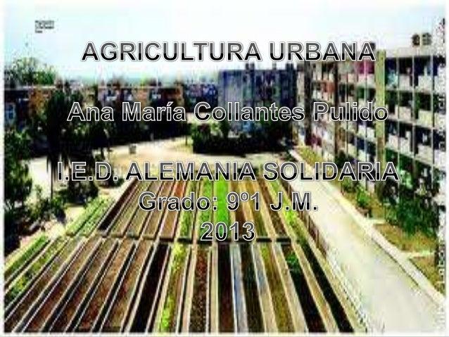 La agricultura urbana es aquella en donde seutilizan los lugares construidos en la ciudad paracultivar diferentes clases d...