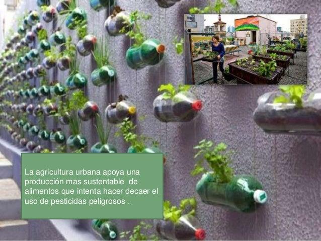 Los agricultores urbanos ylocales también eliminan lanecesidad de conservantes, yaque sus productos no tienen queviajar la...
