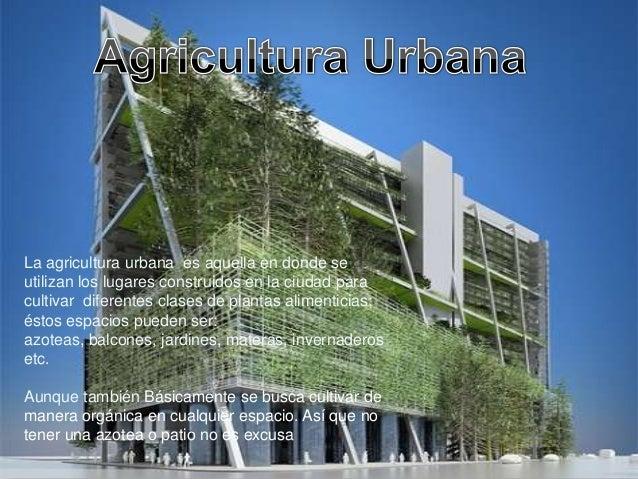 La Agricultura Urbana no es solo el cultivo deplantas alimenticias, también encierra todo loque es ganado, pesca y foresta...