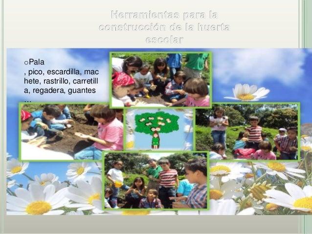 Agricultura urbana 3' (1)
