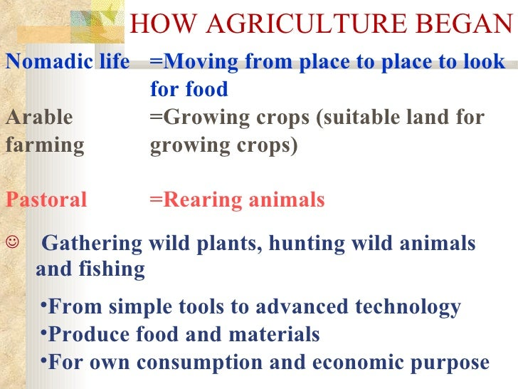 HOW AGRICULTURE BEGAN <ul><li>Gathering wild plants, hunting wild animals and fishing   </li></ul><ul><li>From simple tool...