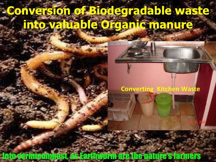 utilization of biodegradable kitchen wastes into organic fertilizer using earthworms essay Such systems usually use kitchen and garden waste, using earthworms and  other microorganisms to digest organic wastes, such as kitchen scraps.