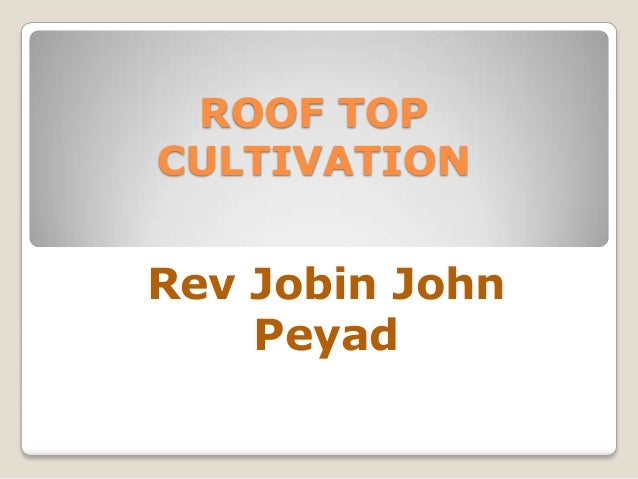 ROOF TOP CULTIVATION Rev Jobin John Peyad