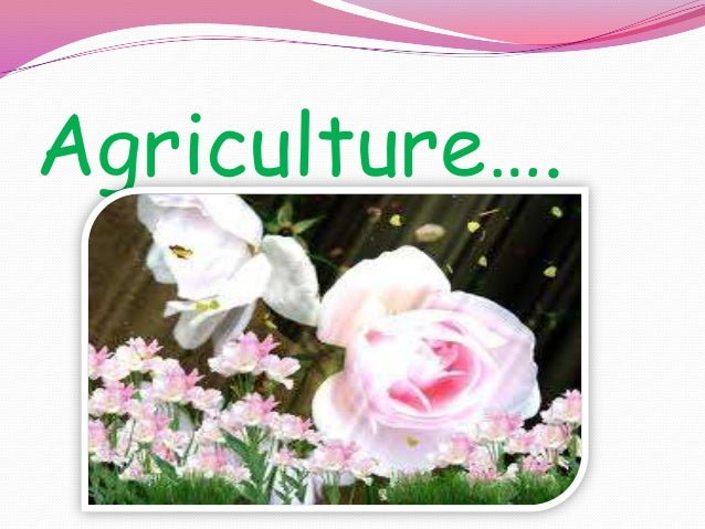 Agriculture….