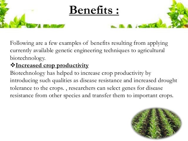 some examples of the use of genetic engineering of crops in agriculture What is genetic engineering - definition for some diabetic patients what is genetic engineering.