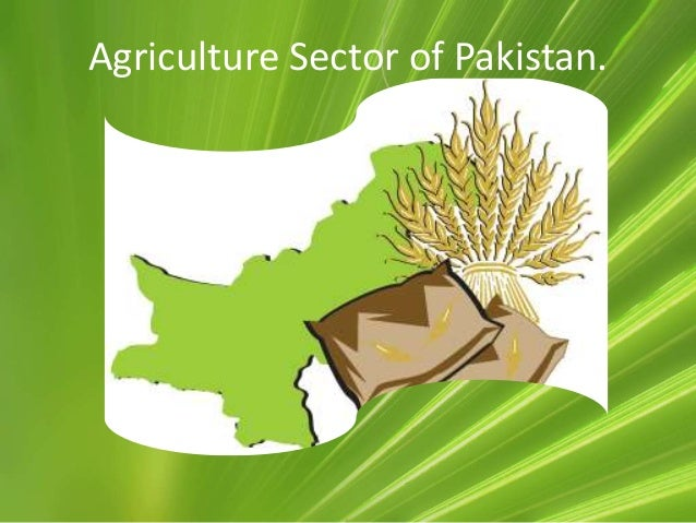 agriculture of pakistan Mcb bank is financing agriculture sector since 1973 due to large branch  network and specialized staff posted in the branches, mcb bank caters to the.