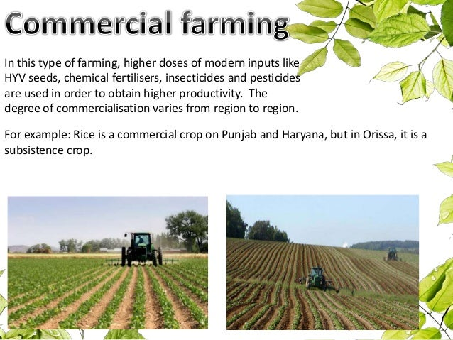 factors that affect the distribution of agriculture geography 7 omega
