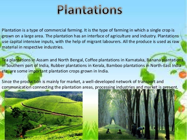 Agriculture -Geography - Class 10