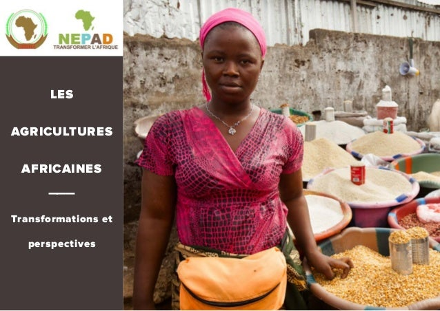 LES AGRICULTURES AFRICAINES ——— Transformations et perspectives
