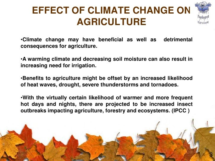 thesis on climate change and agriculture Over the past decade, human activity has started to cause an increased rate of negative change to our climate although climate change is a worldwide problem no one.