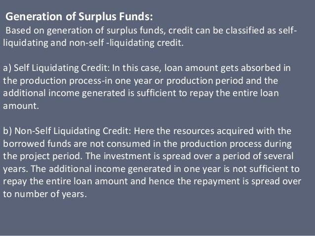 Self liquidating debt definition accounting