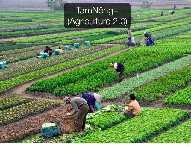 TamNông+ (Agriculture 2.0) 1