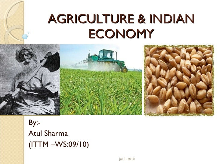 advantages of agriculture in indian economy Agriculture, for decades, had been associated with the production of basic food crops agriculture and farming were synonymous so long as farming was not commercialized but as the process of economic development accelerated, many more other occupations allied to farming came to be recognized as a .