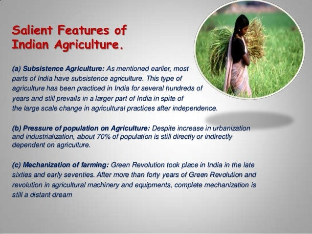 Salient features of indian economy essays on success
