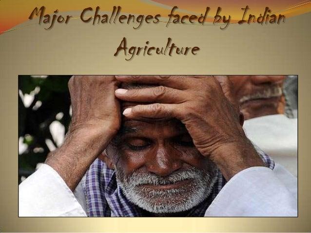 Agriculture In Indian Economy Vishnu Pujari