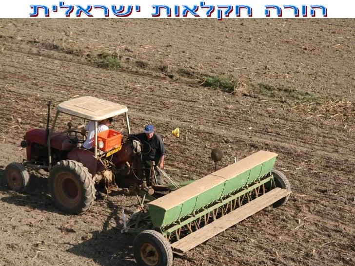 הורה חקלאות ישראלית<br />