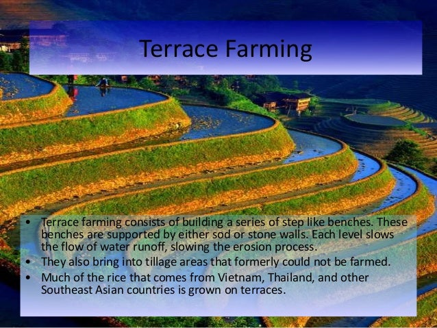 Farming methods for The definition of terrace