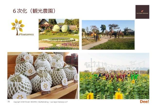 Copyright 2018 Hiroshi ISOJIMA / DeeMarketing / Lao-Japan Gateway LLP 6次化(観光農園) 31