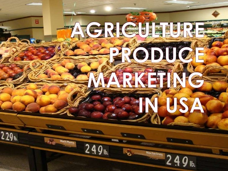 AGRICULTURE PRODUCE MARKETING IN USA<br />