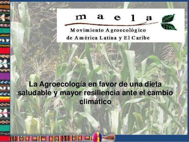La Agroecología en favor de una dieta saludable y mayor resiliencia ante el cambio climático