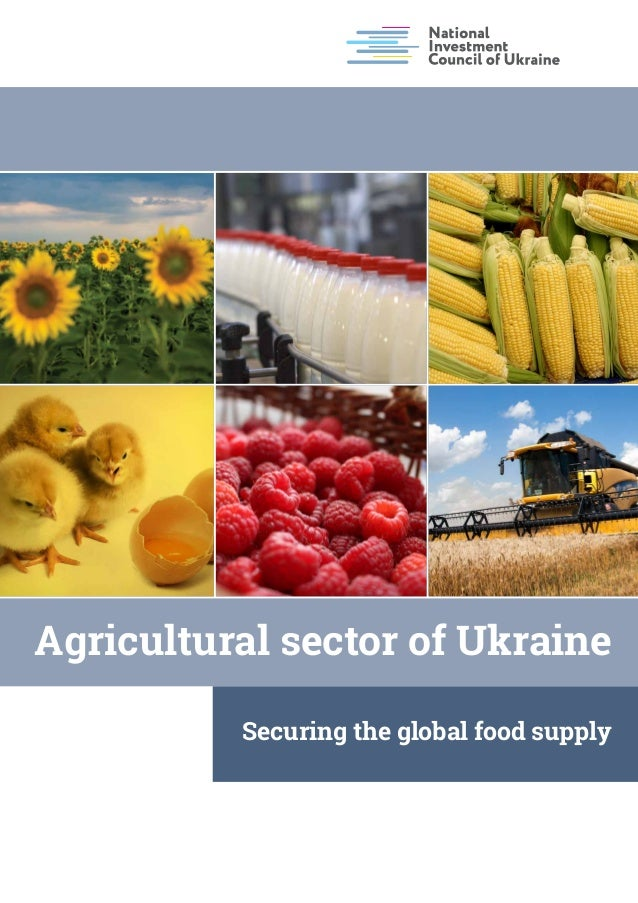 Invest in Ukraine: Agriculture Sector