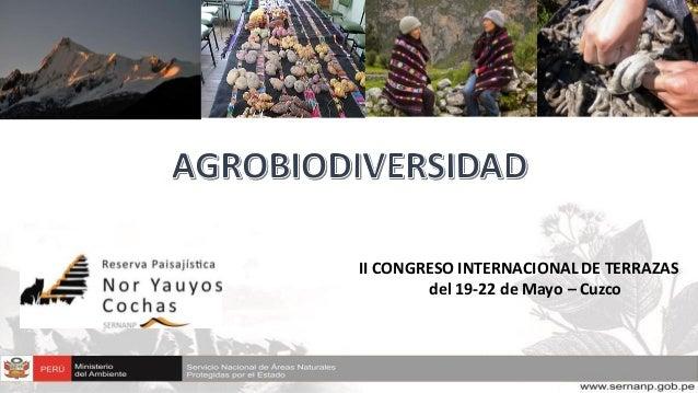 II CONGRESO INTERNACIONAL DE TERRAZAS del 19-22 de Mayo – Cuzco