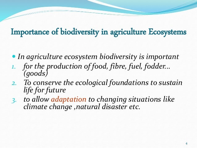 ecology and biodiversity of agriculturally important Ecology and biodiversity of agriculturally important rice  field arthropods thesis submitted to the university of.