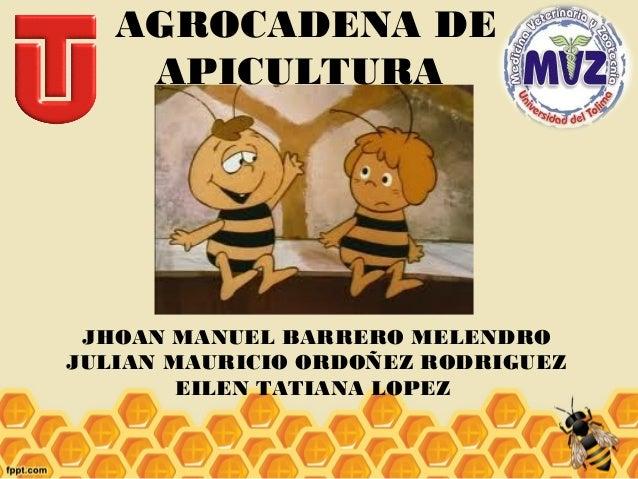 AGROCADENA DE APICULTURA  JHOAN MANUEL BARRERO MELENDRO JULIAN MAURICIO ORDOÑEZ RODRIGUEZ EILEN TATIANA LOPEZ
