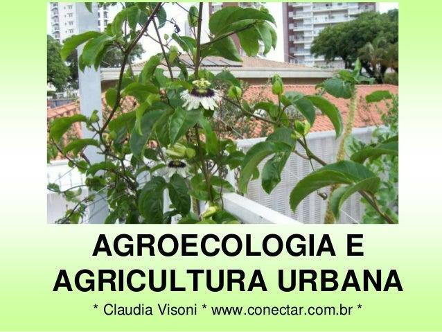 AGROECOLOGIA EAGRICULTURA URBANA* Claudia Visoni * www.conectar.com.br *