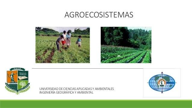 AGROECOSISTEMAS  UNIVERSIDAD DE CIENCIAS APLICADAS Y AMBIENTALES  INGENIERÍA GEOGRÁFICA Y AMBIENTAL