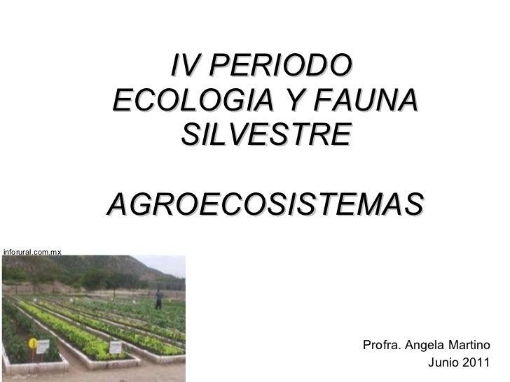IV PERIODO  ECOLOGIA Y FAUNA SILVESTRE AGROECOSISTEMAS Profra. Angela Martino Junio 2011 inforural.com.mx