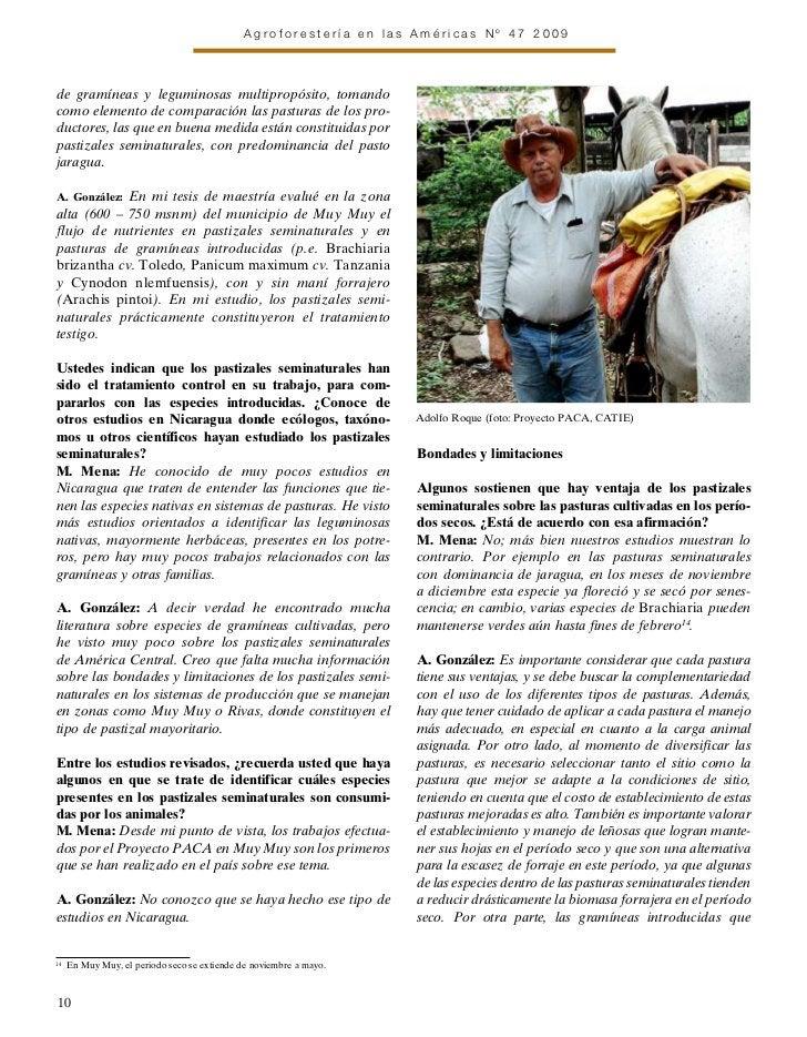 Agroforestería en las Américas Nº 47 2009de gramíneas y leguminosas multipropósito, tomandocomo elemento de comparación la...
