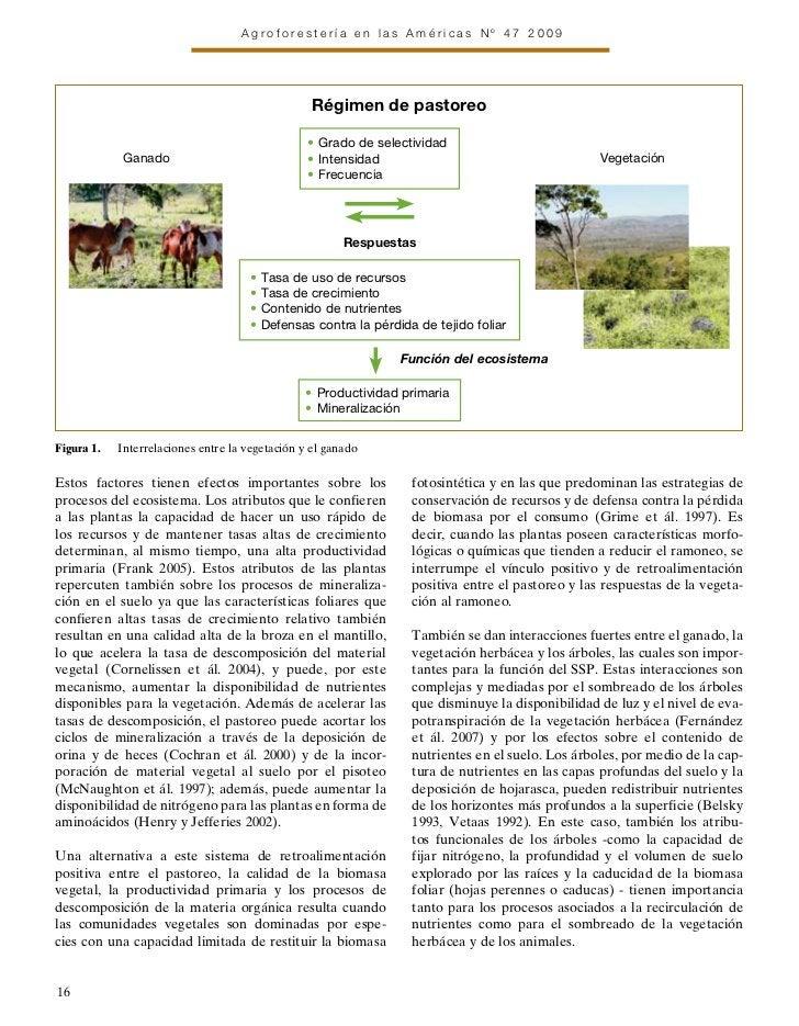 Agroforestería en las Américas Nº 47 2009                                                  Régimen de pastoreo            ...