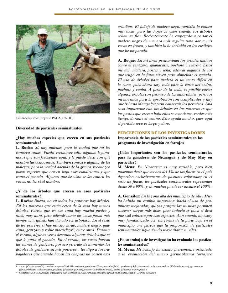Agroforestería en las Américas Nº 47 2009                                                                                 ...