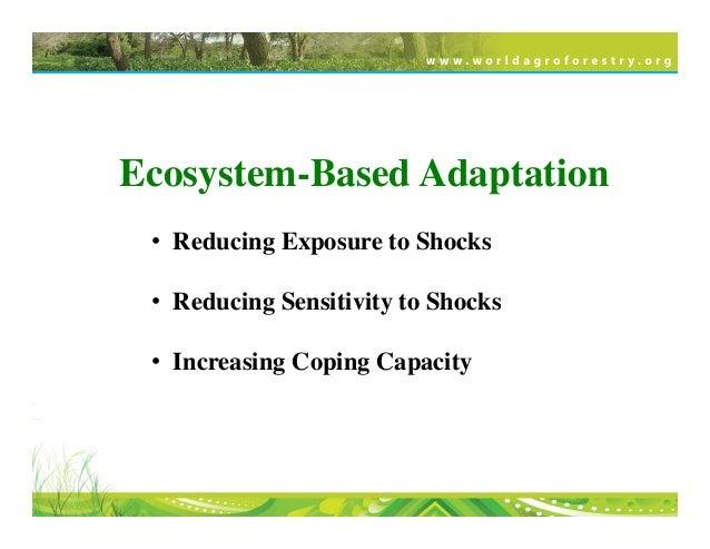 Ecosystem-Based Adaptation • Reducing Exposure to Shocks   • Reducing Sensitivity to Shocks  • Increasing Coping C...