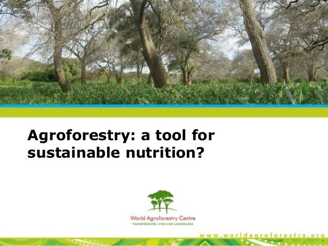 Agroforestry: a tool for sustainable nutrition?