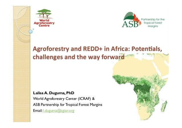AgroforestryandREDD+inAfrica:Poten6als, challengesandthewayforward Lalisa A. Duguma, PhD World Agroforestry Cen...