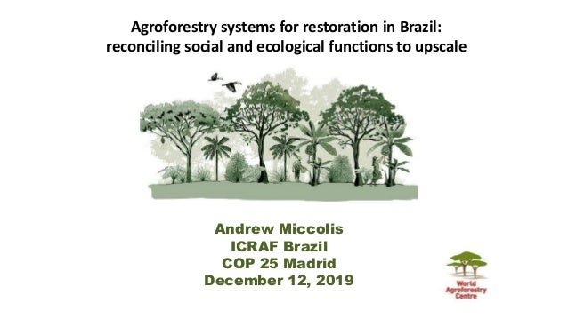 Agroforestry systems for restoration in Brazil: reconciling social and ecological functions to upscale Andrew Miccolis ICR...