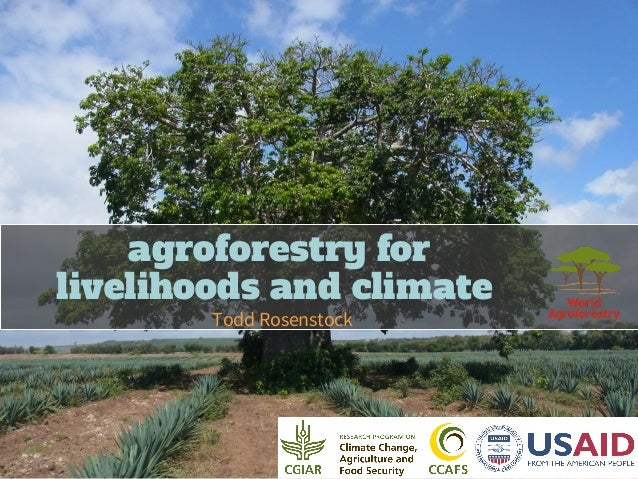 agroforestry for livelihoods and climate Todd Rosenstock