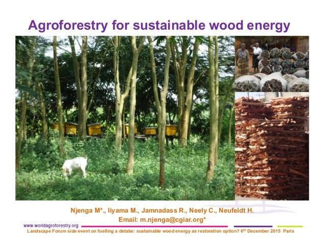 Njenga M*., Iiyama M., Jamnadass R., Neely C., Neufeldt H. Email: m.njenga@cgiar.org* Landscape Forum side event on fuelli...
