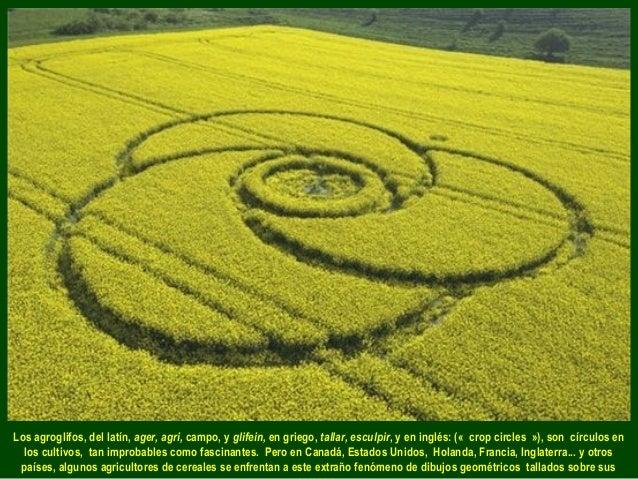 Los agroglifos, del latín, ager, agri, campo, y glifein, en griego, tallar, esculpir, y en inglés: («crop circles»), son...