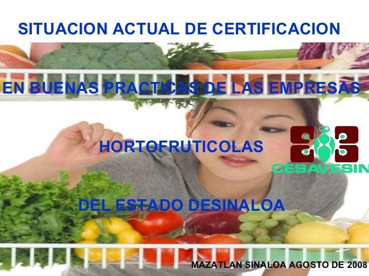 SITUACION ACTUAL DE CERTIFICACION  EN BUENAS PRACTICAS DE LAS EMPRESAS HORTOFRUTICOLAS  DEL ESTADO DESINALOA MAZATLAN SINA...