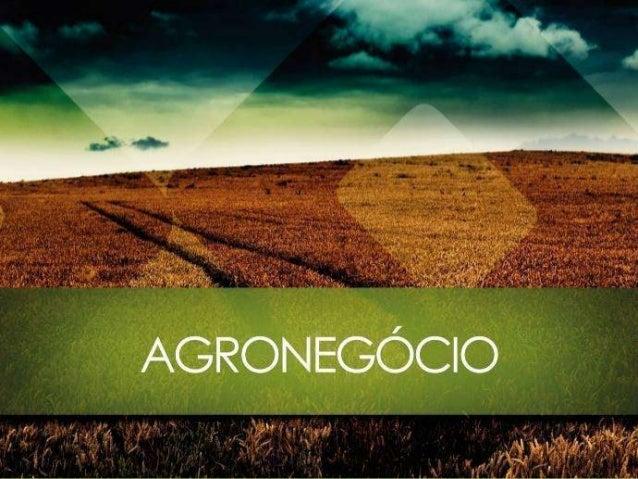 Agronegócio contradições que comprometem o desempenho da nossa economia • Li um texto recentemente do senador Aécio Neves ...