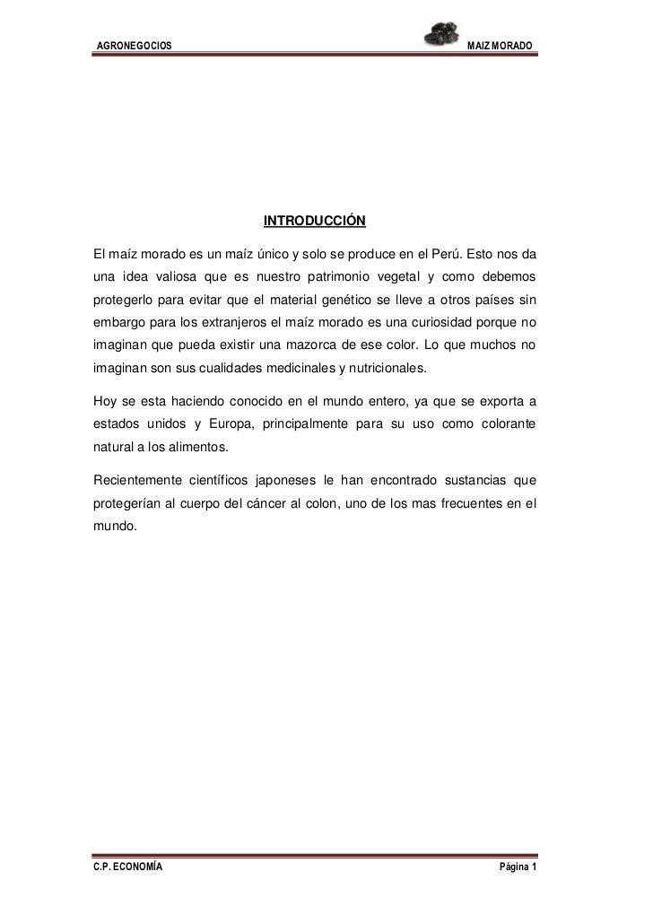 AGRONEGOCIOS                                                   MAIZ MORADO                            INTRODUCCIÓNEl maíz ...