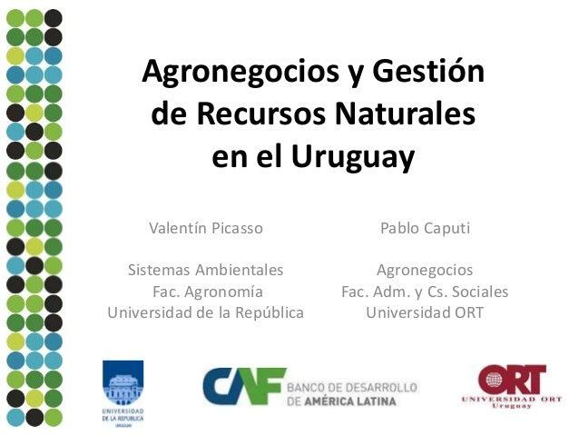 Agronegocios y Gestión de Recursos Naturales en el Uruguay Valentín Picasso  Pablo Caputi  Sistemas Ambientales Fac. Agron...