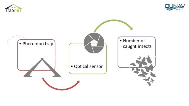 • Pheromon trap • Optical sensor • Number of caught insects