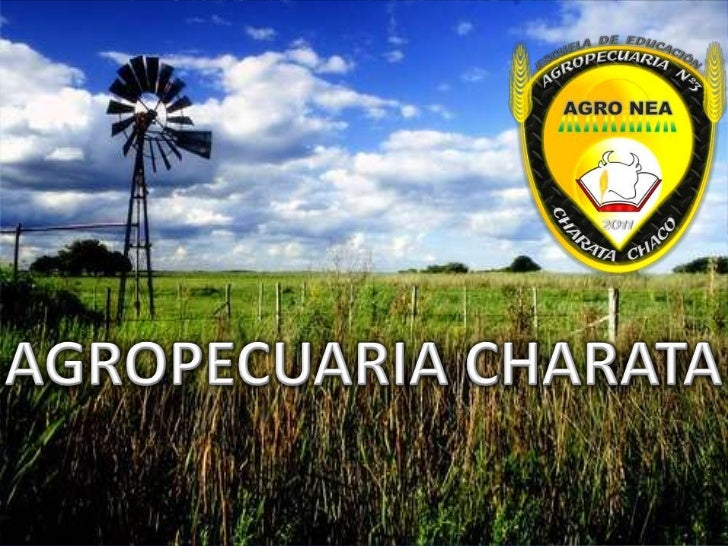 AGROPECUARIA CHARATA<br />